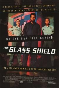 glass shielf