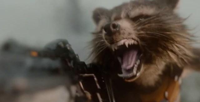 Sexiest Raccoon Alive.
