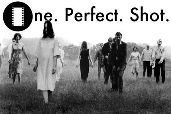 oneperfectshot