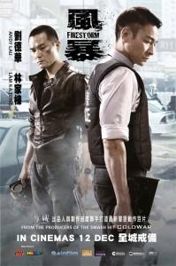 FIRESTORM 3D (2013)