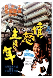 THE DELINQUENT (1973)