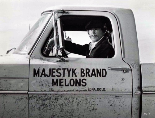 Majestyk_Brand_Melons_Pic