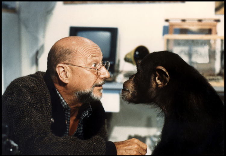 phenomena-donald-pleasence-monkey.jpg