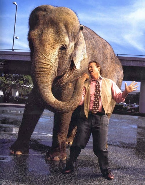 Bill Murray elephant Larger Than Life