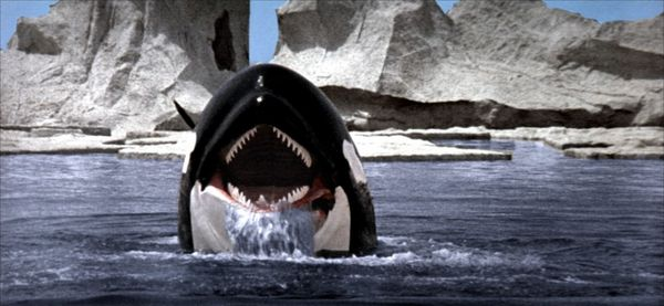[MOVIE OF THE DAY] ORCA (1977)
