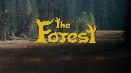 [NOW ON BLU-RAY (I THINK)] THE FOREST (1982)
