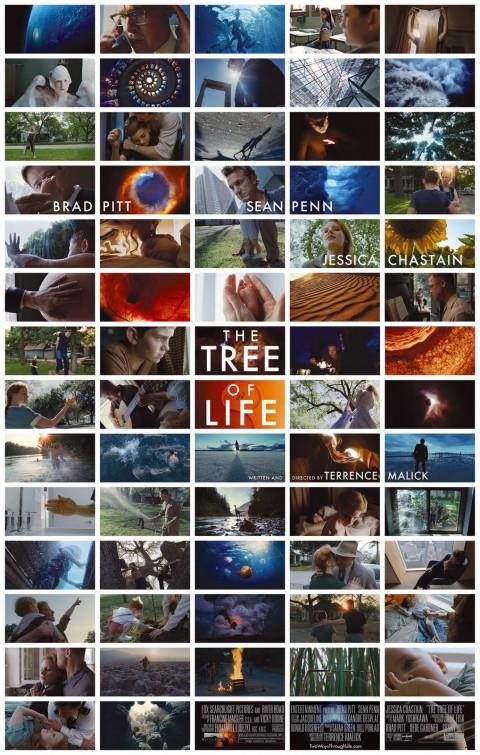 tree-of-life-2011