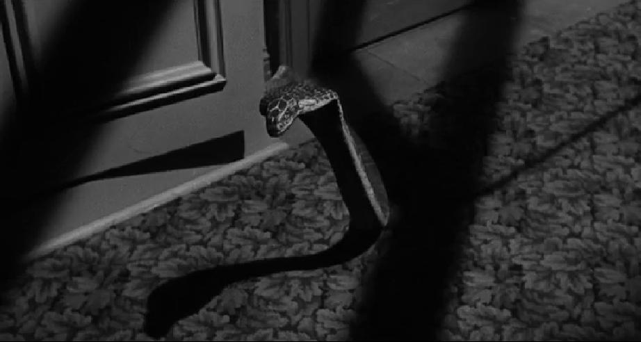 [WHY'D IT HAVE TO BE SNAKES WEEK] CULT OF THE COBRA (1955)