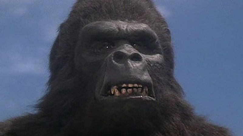 [THE DAILY GRINDHOUSE PODCAST] APES-SPLOITATION