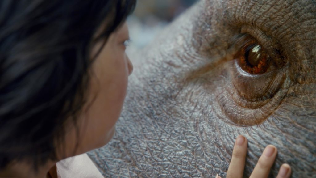 [NOW STREAMING ON NETFLIX!] OKJA (2017)