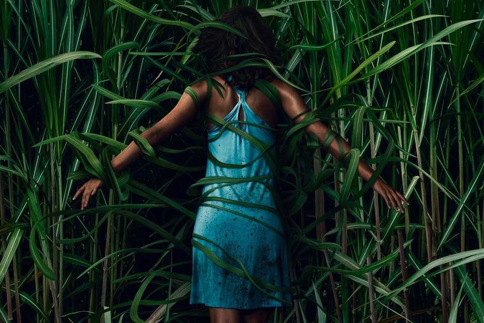 [FANTASTIC FEST 2019] NETFLIX BRINGS A PAIR OF DUDS WITH 'IN THE TALL GRASS' AND 'IN THE SHADOW OF THE MOON'