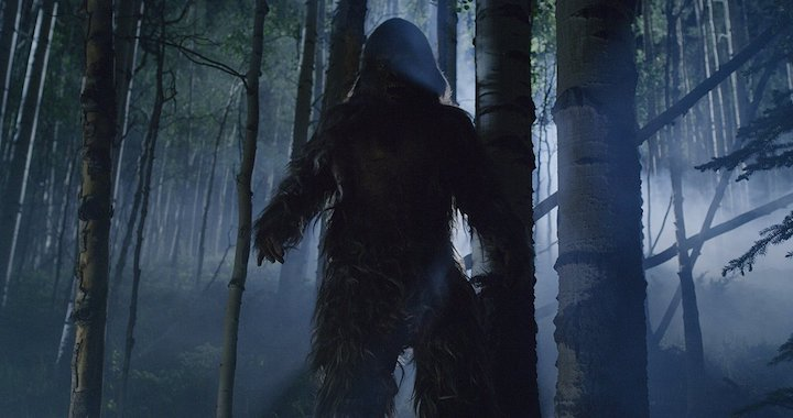 HOAX (2019) Is there Bigfoot in them thar trees?