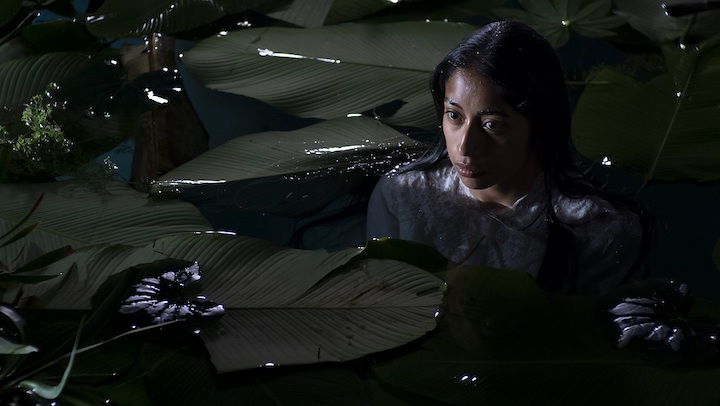 LA LLORONA (2019) down in the dark water
