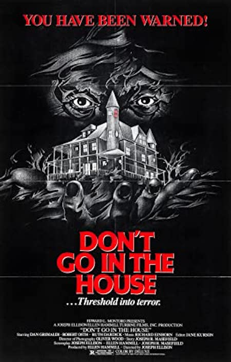 DON'T GO IN THE HOUSE original poster