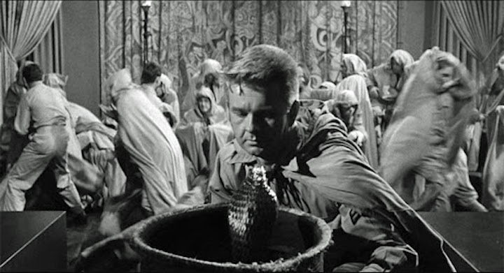 CULT OF THE COBRA (1955) why did it have to be snakes? oh right, the title.