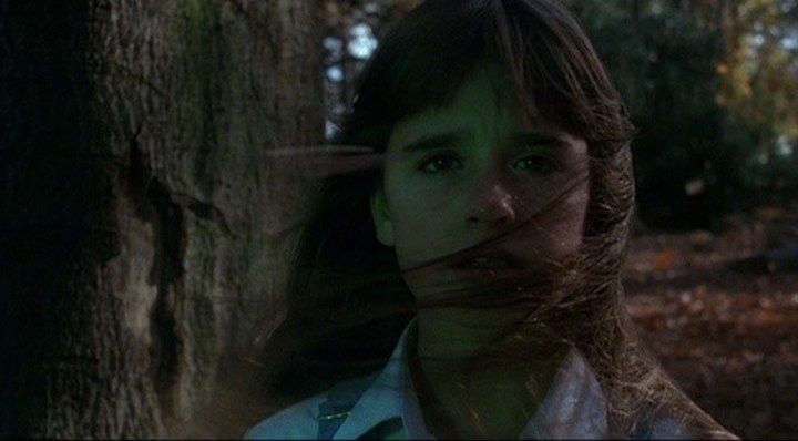 THE WATCHER IN THE WOODS (1980) Kyle Richards was in films by Tobe Hooper, John Carpenter, and Hough before her teens. Respect.