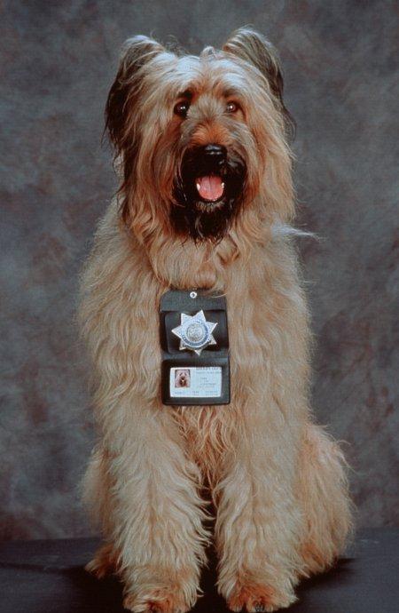 TOP DOG (1995) Betty as Reno