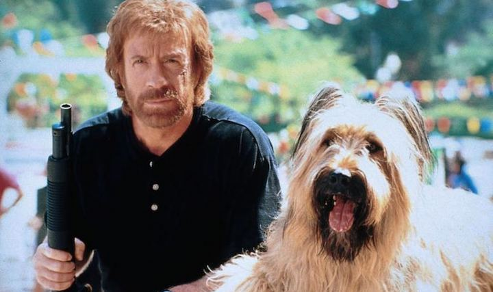 TOP DOG (1995) Chuck Norris and Betty